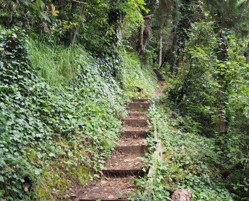 escursioni e trekking in San Marino repubblica con guida escursionistica ambientale sentiero della rupe Monte titano