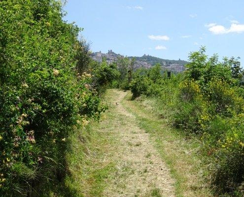 Sentieri del Parco di Montecerreto Trekking San Marino outdoor