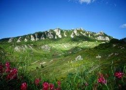San Marino Repubblica fiori panorama Torri Unesco